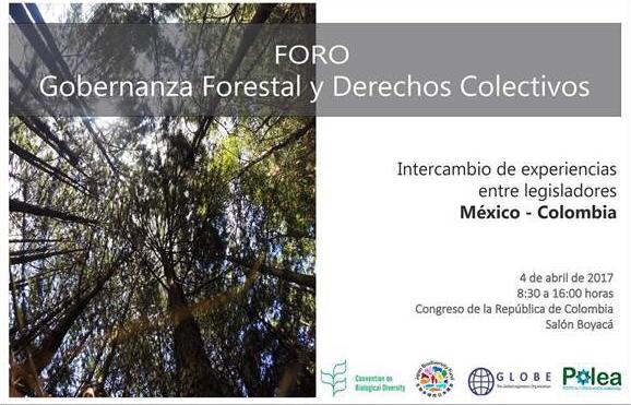 foro-gobernanza-forestal-derechos-colectivos