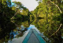 Fondo BID Leticia medio ambiente bioeconomia BID sociedad clima amazonia