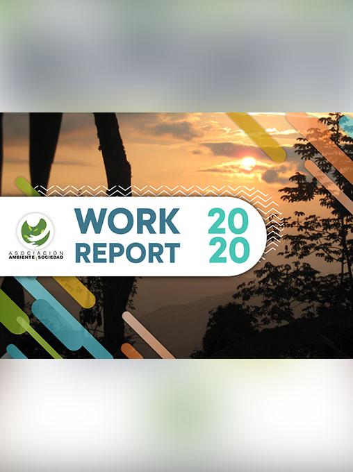 WORK REPORT AMBIENTE SOCIEDAD 2020 1